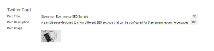 page level seo twiter card.png